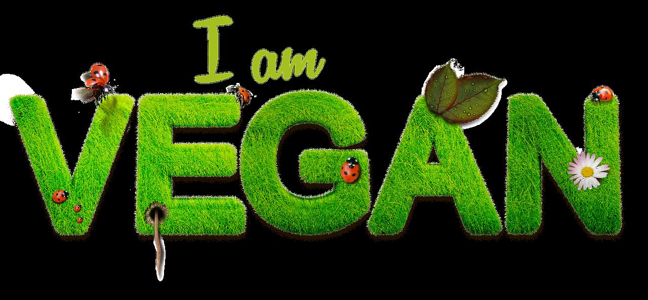 I am vegan sign